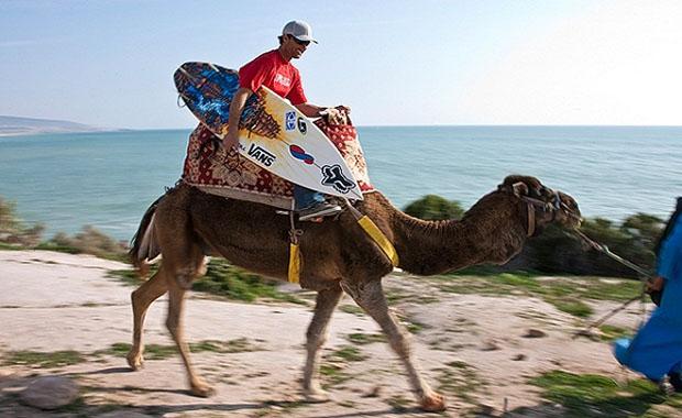 Марокко зимой отзывы туристов